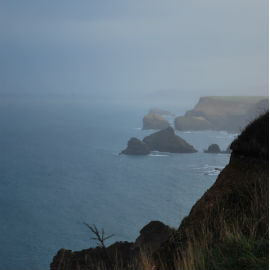 Walk #1- North Cliffs to Portreath